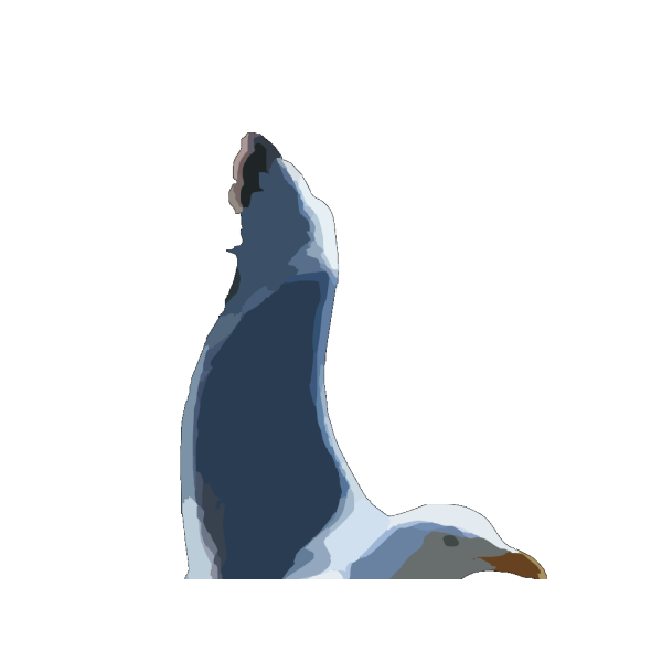 Seagull2 PNG Clip art