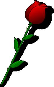 Rose Red Flower PNG Clip art
