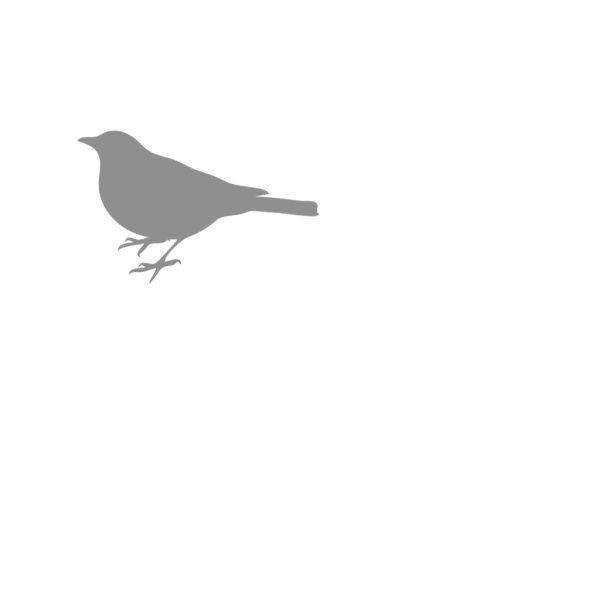 Gray Bird Silhouette PNG images