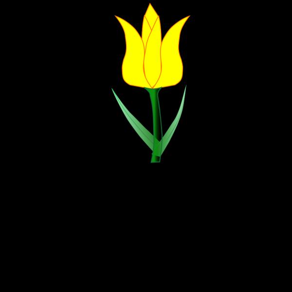 Tulip PNG Clip art