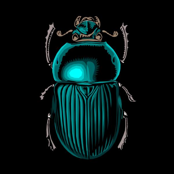 Beetle Bug PNG Clip art