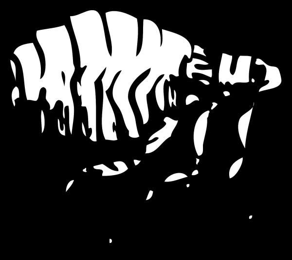 Flea PNG Clip art