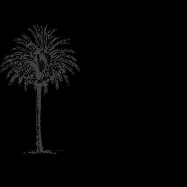 Date Palm PNG Clip art