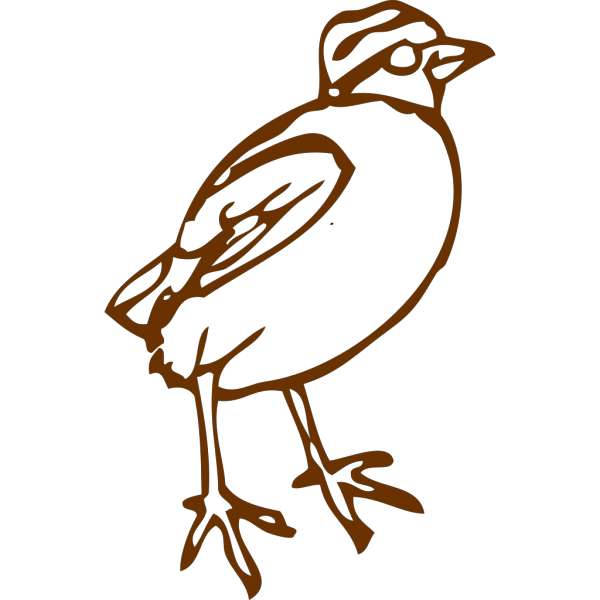 Brownbird PNG Clip art