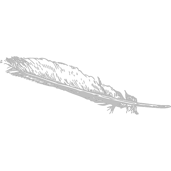 Grey Feather PNG Clip art