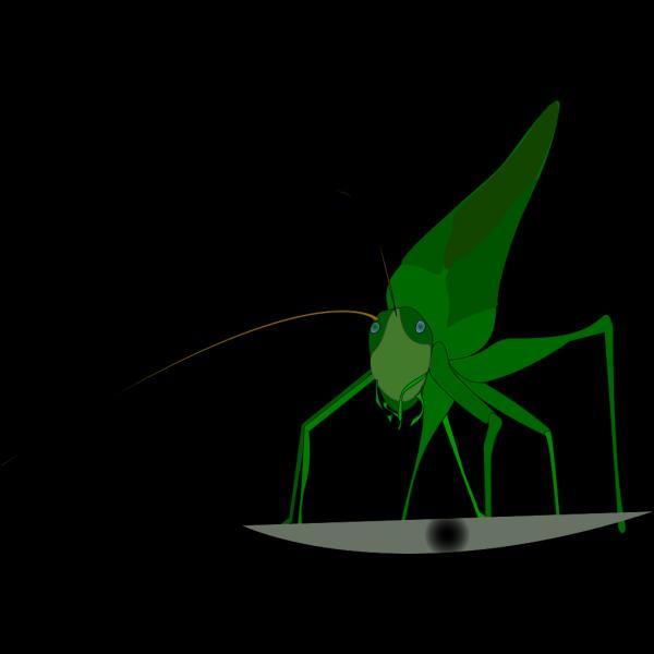 Emeza Grasshopper PNG Clip art
