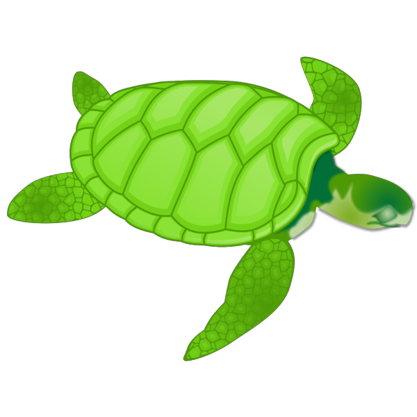 Green Sea Turtle PNG icons