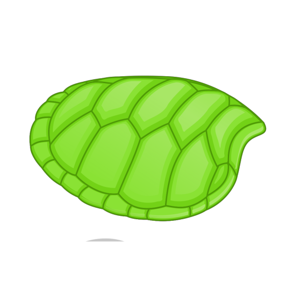 Turtle Shell PNG clipart