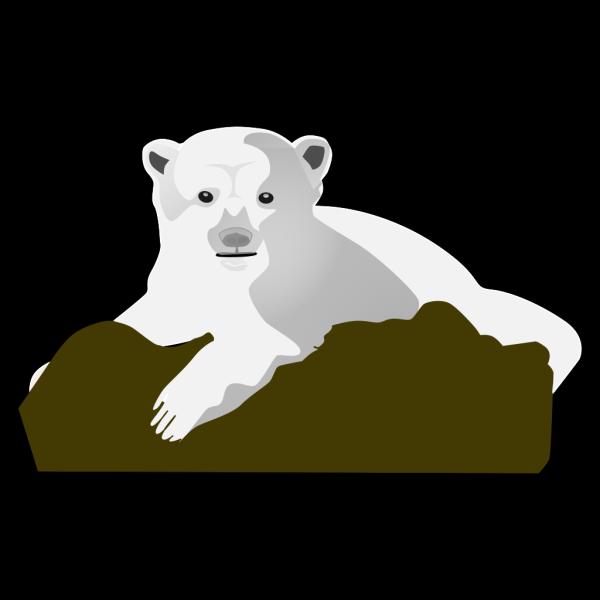 The Polar Bear PNG Clip art