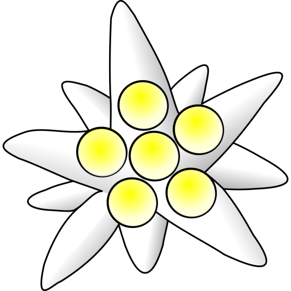 Flower Circles PNG Clip art