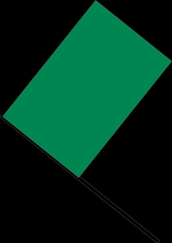 Green Beetle  PNG Clip art