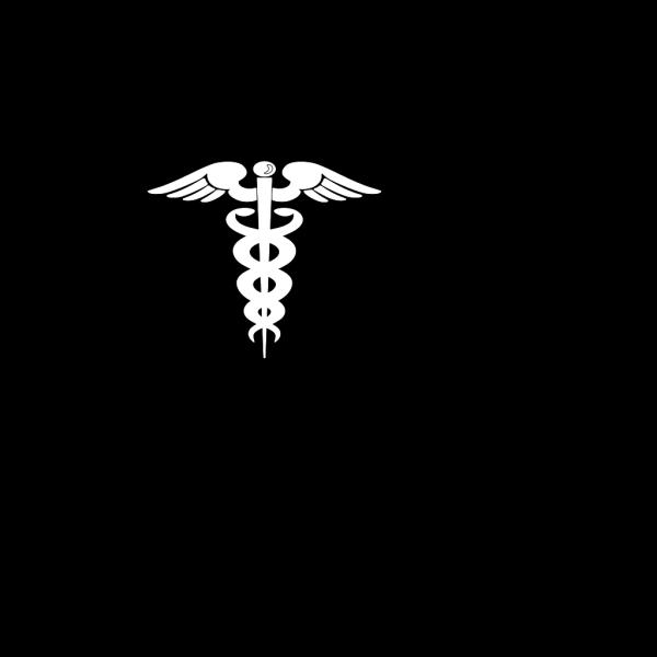 3d Medical Skull PNG Clip art