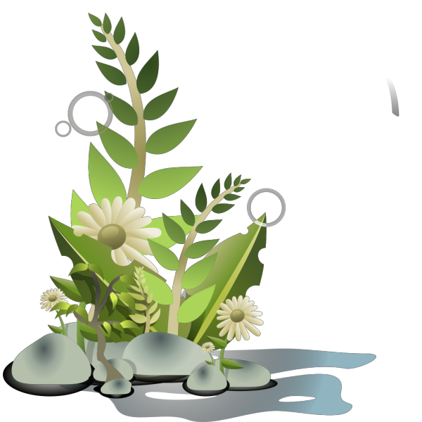 Andy Plants Pebbles And Flowers PNG Clip art