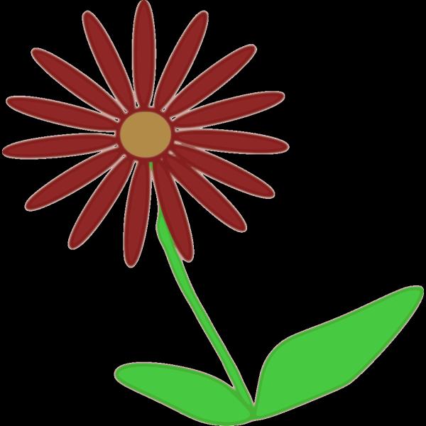 Flower 11 PNG Clip art