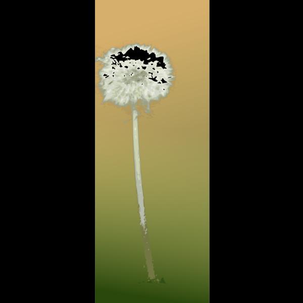 Dandelion PNG clipart