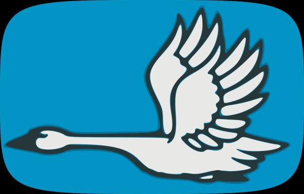 Swan Swimming PNG Clip art
