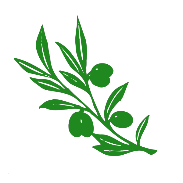 Olive Tree Branch PNG Clip art