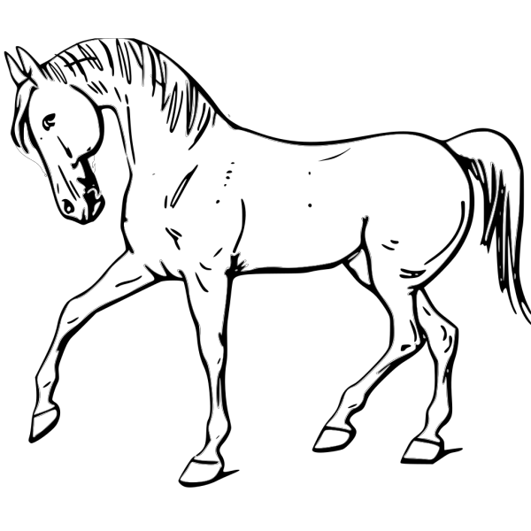 Walking Horse Outline PNG Clip art
