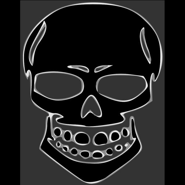 Skull Human X Ray PNG Clip art