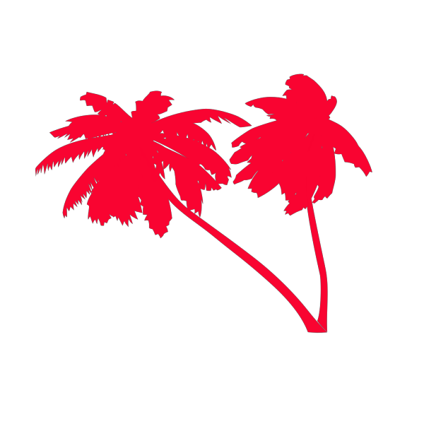 Miniature Coconut Palm PNG images