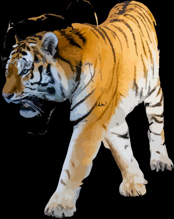 Tiger Running Outline PNG Clip art