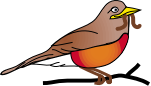 Amercan Robin PNG Clip art