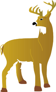 White Tailed Dear PNG Clip art