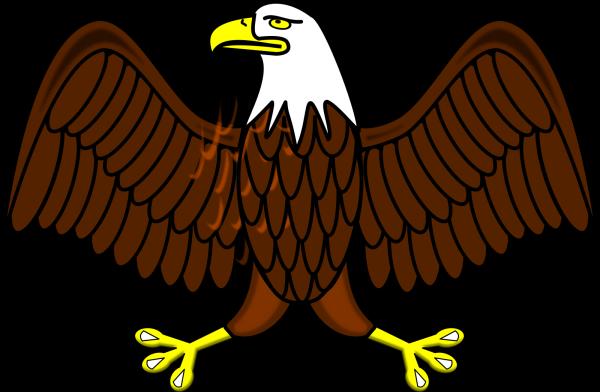 Wing PNG Clip art