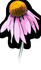 Dead Flower PNG Clip art