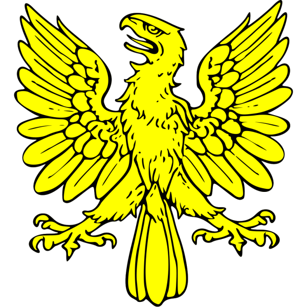 Eagle 24 PNG icon