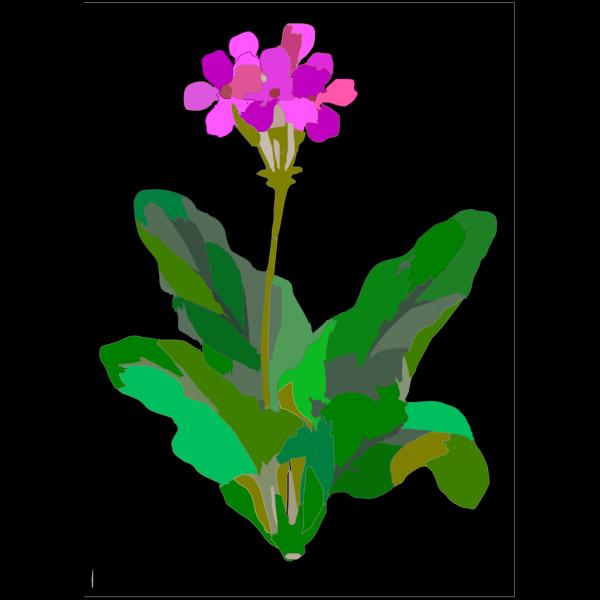 Floral Mod PNG images