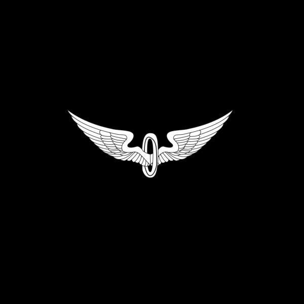 Eagle Wings Outline PNG Clip art