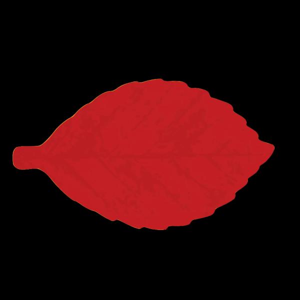 Red Leaf PNG Clip art