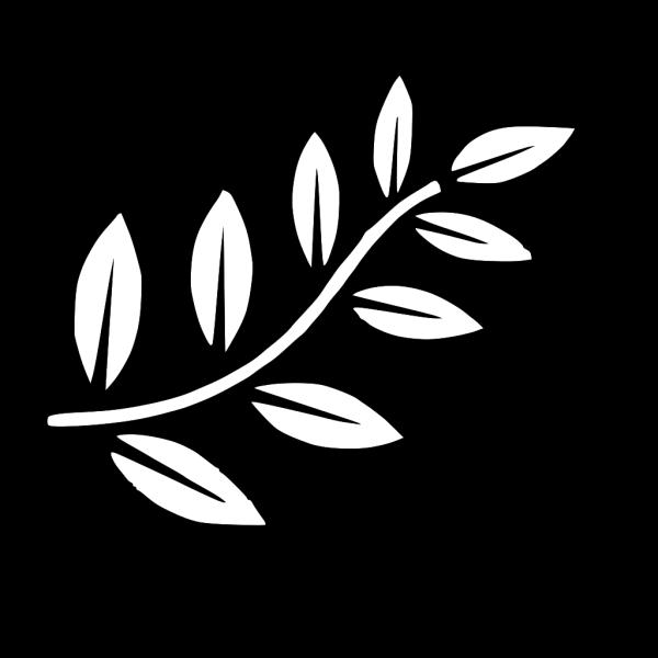Ivory Bird On Branch PNG Clip art