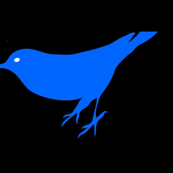 Bird5 PNG Clip art
