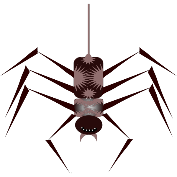 Spider Bug Insect PNG Clip art