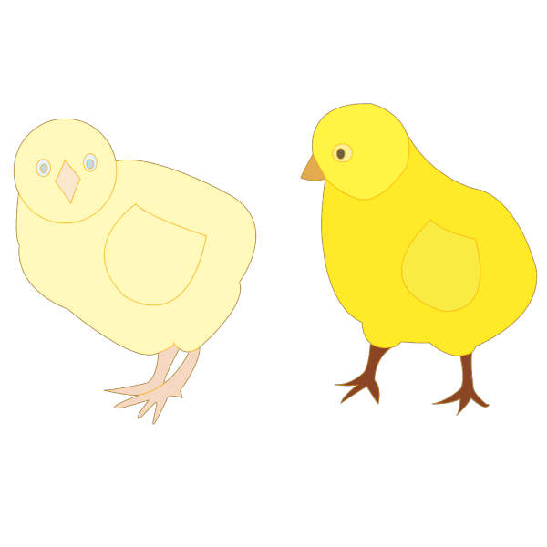 Chicks Figure Color PNG images