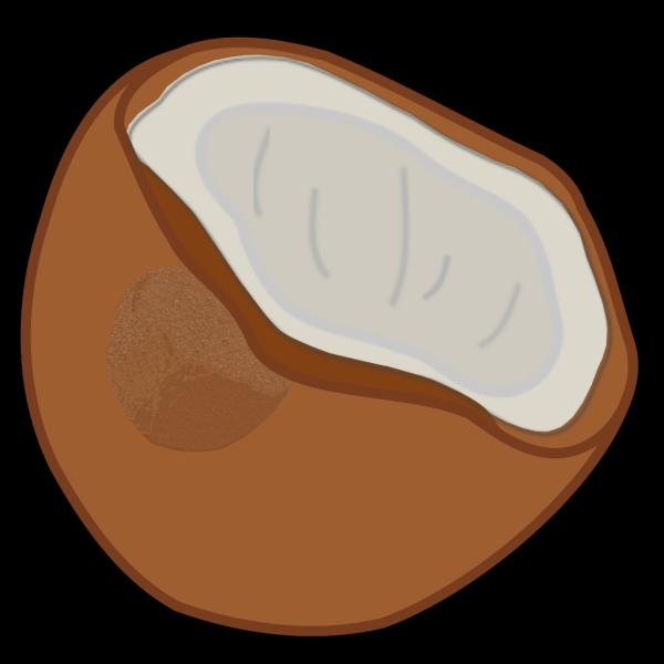 Coconut PNG Clip art