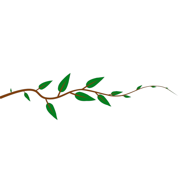 Leaf Vine PNG icons