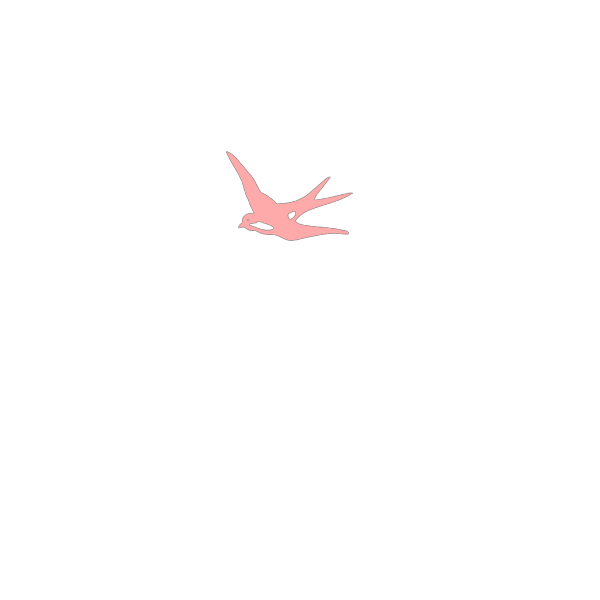 Pinkswallow PNG images
