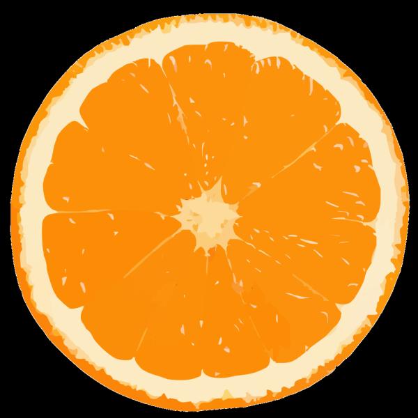 Fruit PNG Clip art