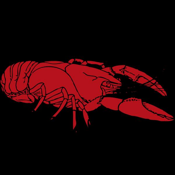 Crayfish PNG Clip art