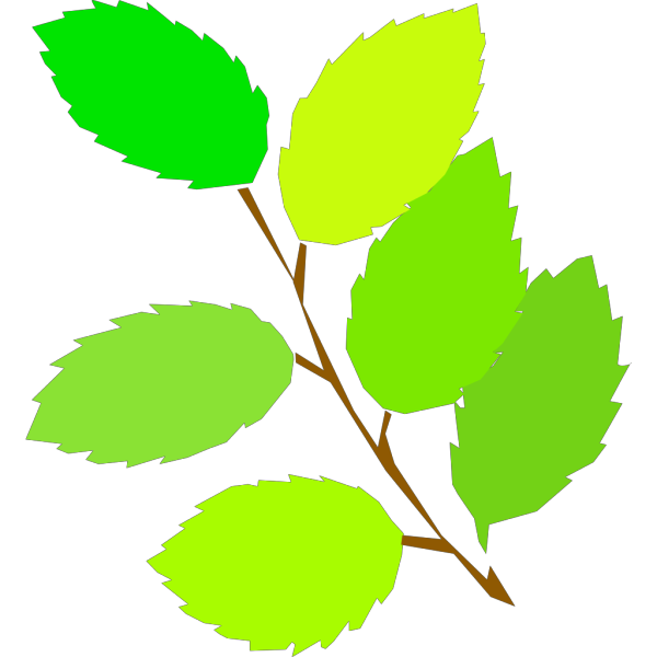 New Leaves Spring PNG Clip art