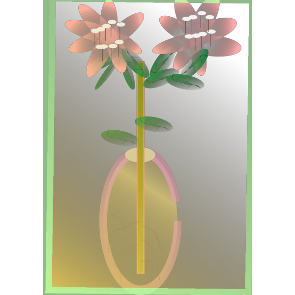 Cotton Plant PNG icon