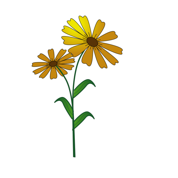 Daisy PNG Clip art