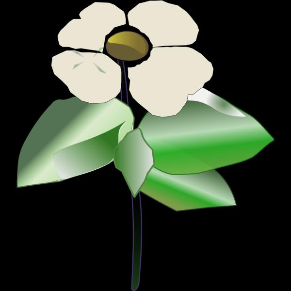 Flower 27 PNG Clip art