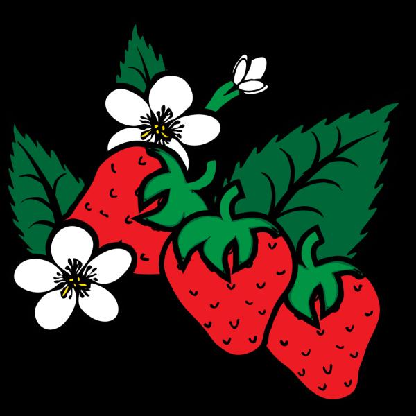 Strawberries PNG Clip art