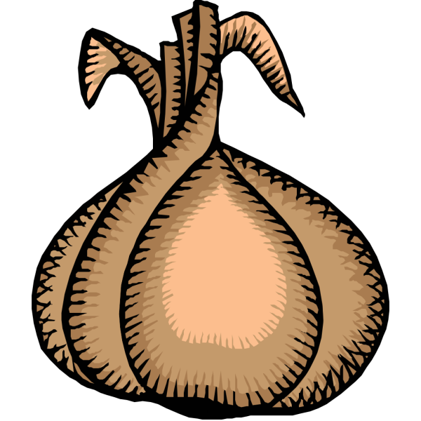 Onion PNG images