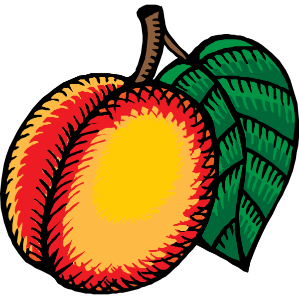 Nectarine PNG Clip art