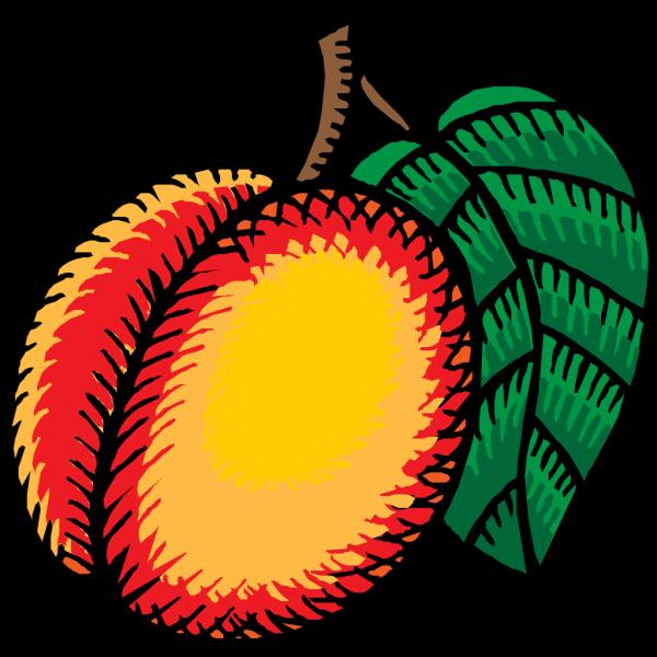 Nectarine PNG Clip art